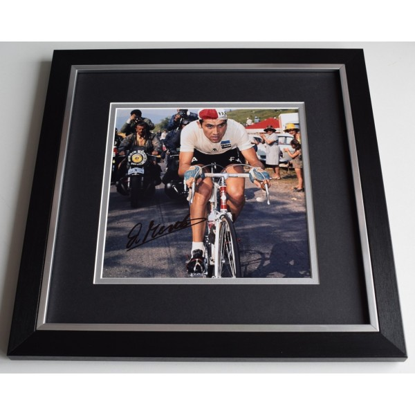Eddy Merckx SIGNED Framed LARGE Square Photo Autograph display Cycling  AFTAL  COA Memorabilia PERFECT GIFT